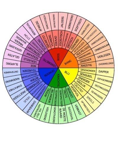 wiel van emoties 2